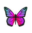 The butterfly with pink wings vector image