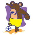 Bear Football vector image