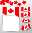 Design elements and flags for celebrate the vector image