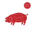 real meat vector image vector image