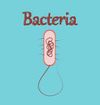 human icon in flat style bacteria vector image