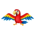 Cute parrot bird cartoon vector image