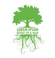 tree logo template vector image