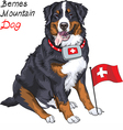Happy Bernese mountain dog with a first aid kit vector image vector image