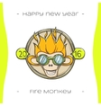 Fire Monkey One vector image