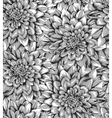 black and white seamless background with dahlia vector image