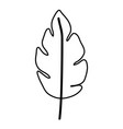 sketch contour of wavy leaf plant with a branch vector image
