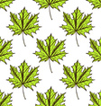 Sketch maple leaves in vintage style vector image
