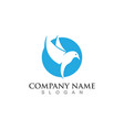 falcon wing logo template icon design vector image