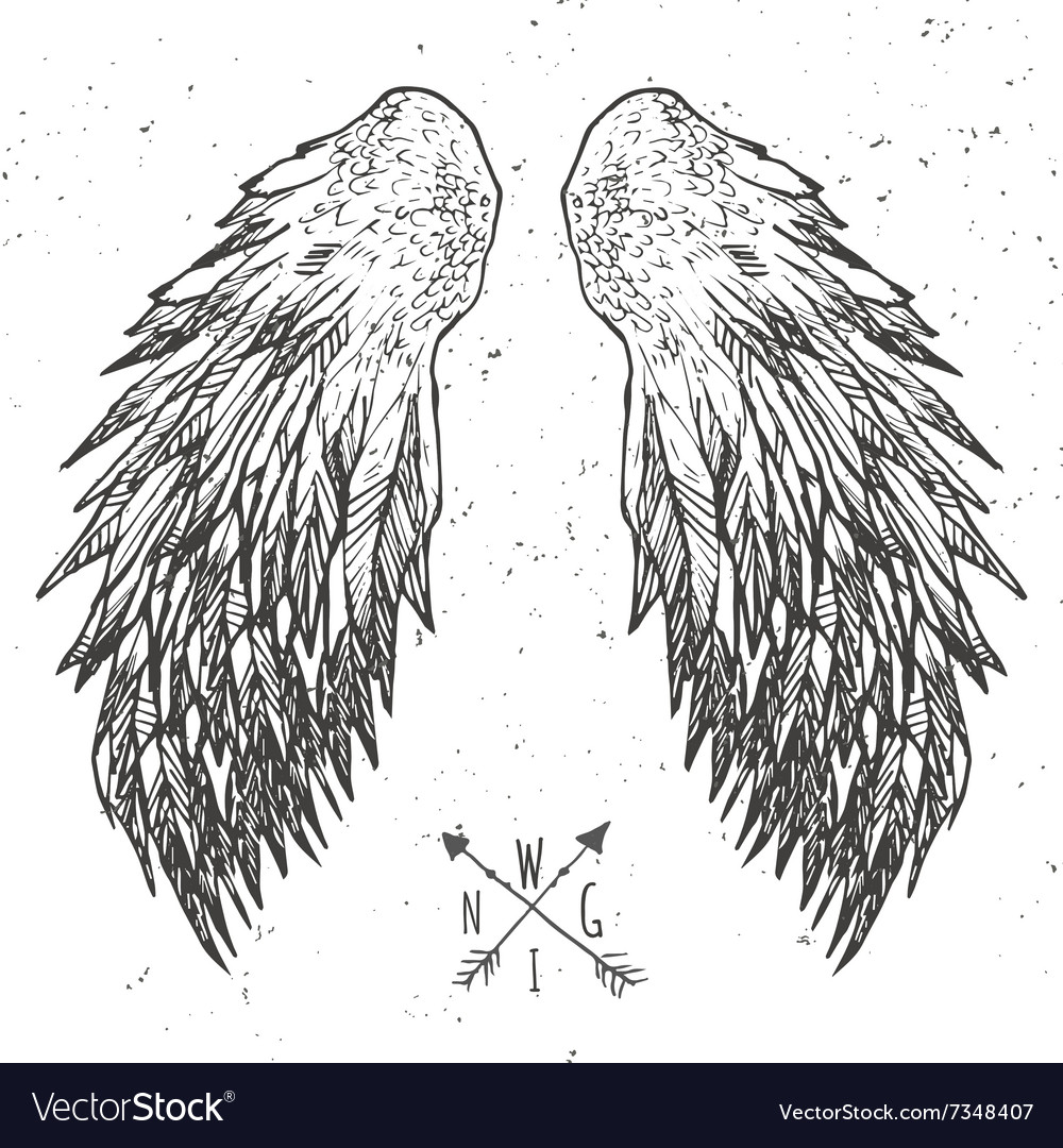 Grunge wings tshirt graphics vector