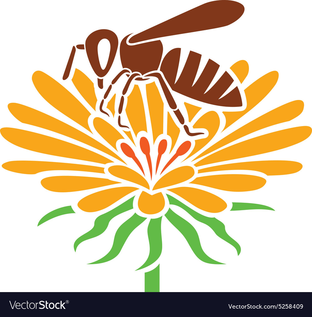 Bee and flower icon vector
