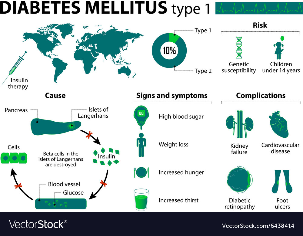 Diabetes mellitus type 1 vector