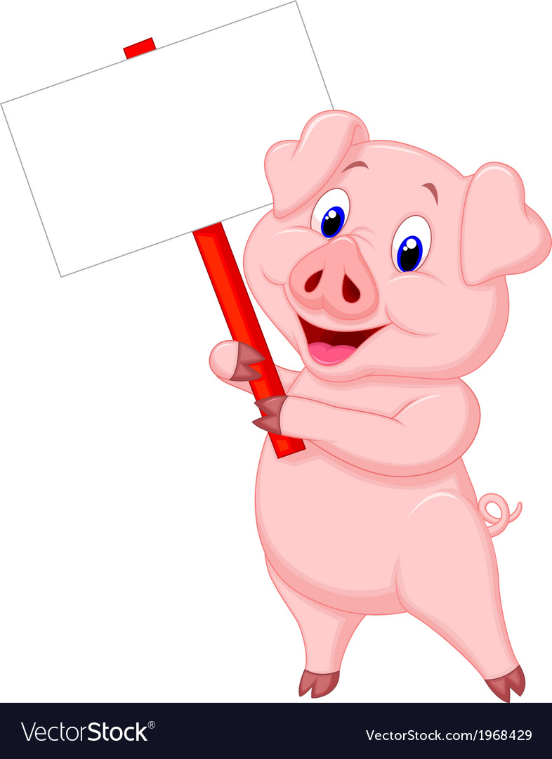 Pig cartoon holding blank sign vector