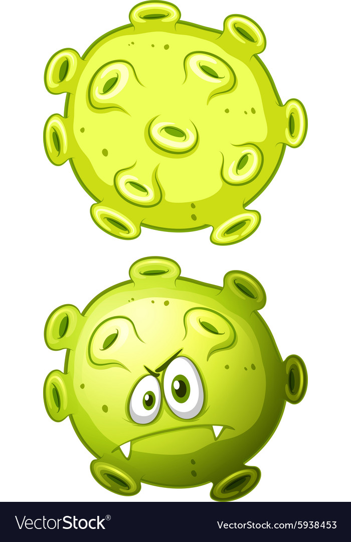 Close up bacteria front and back view vector