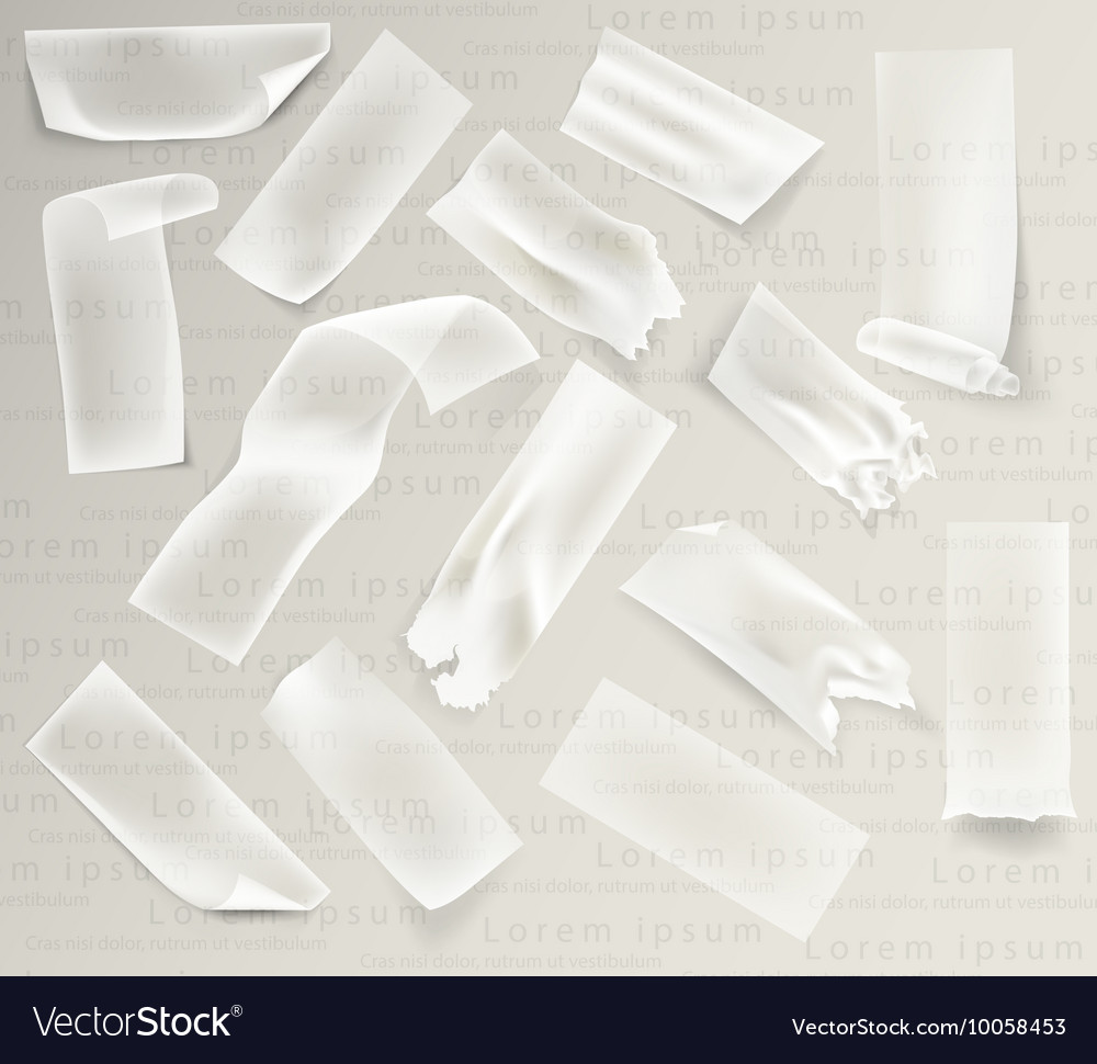 Transparent adhesive tape and adhesive sellotape vector