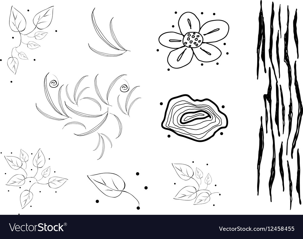Collection of black and white doodle flaral vector