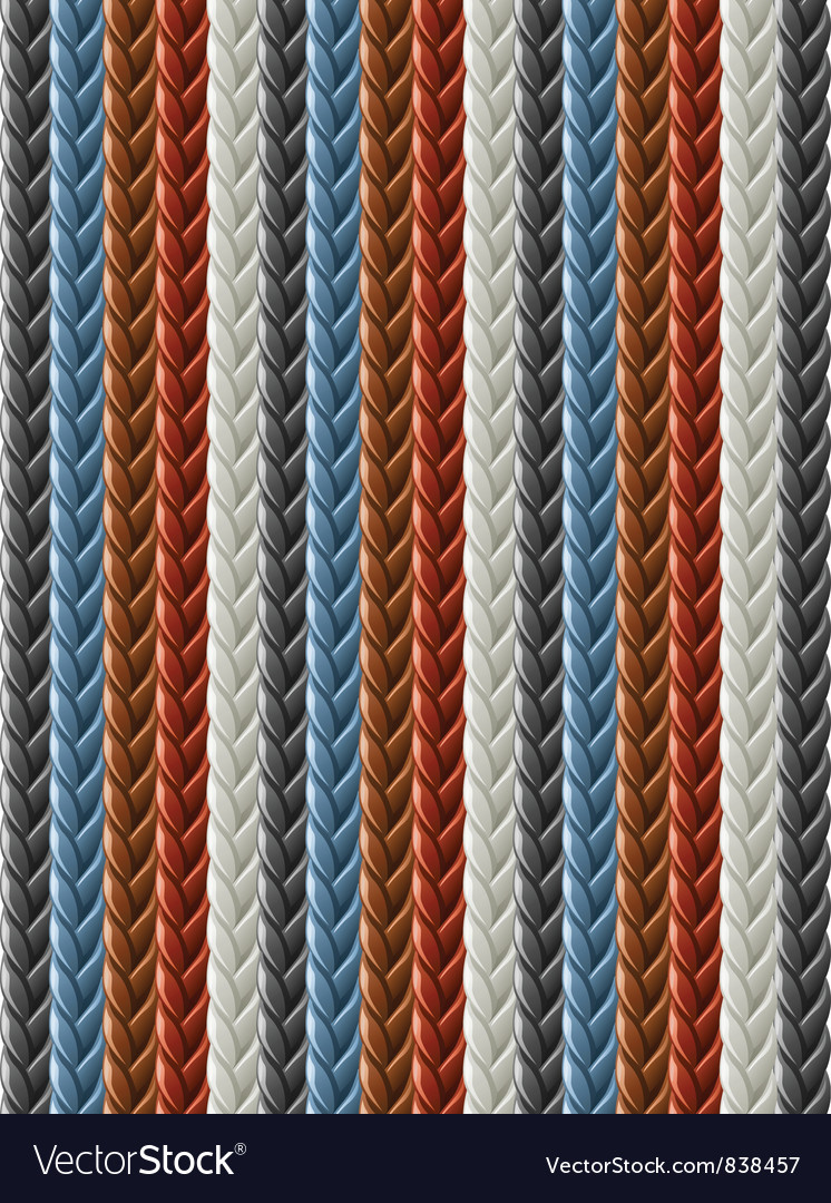 Leather seamless braided vector