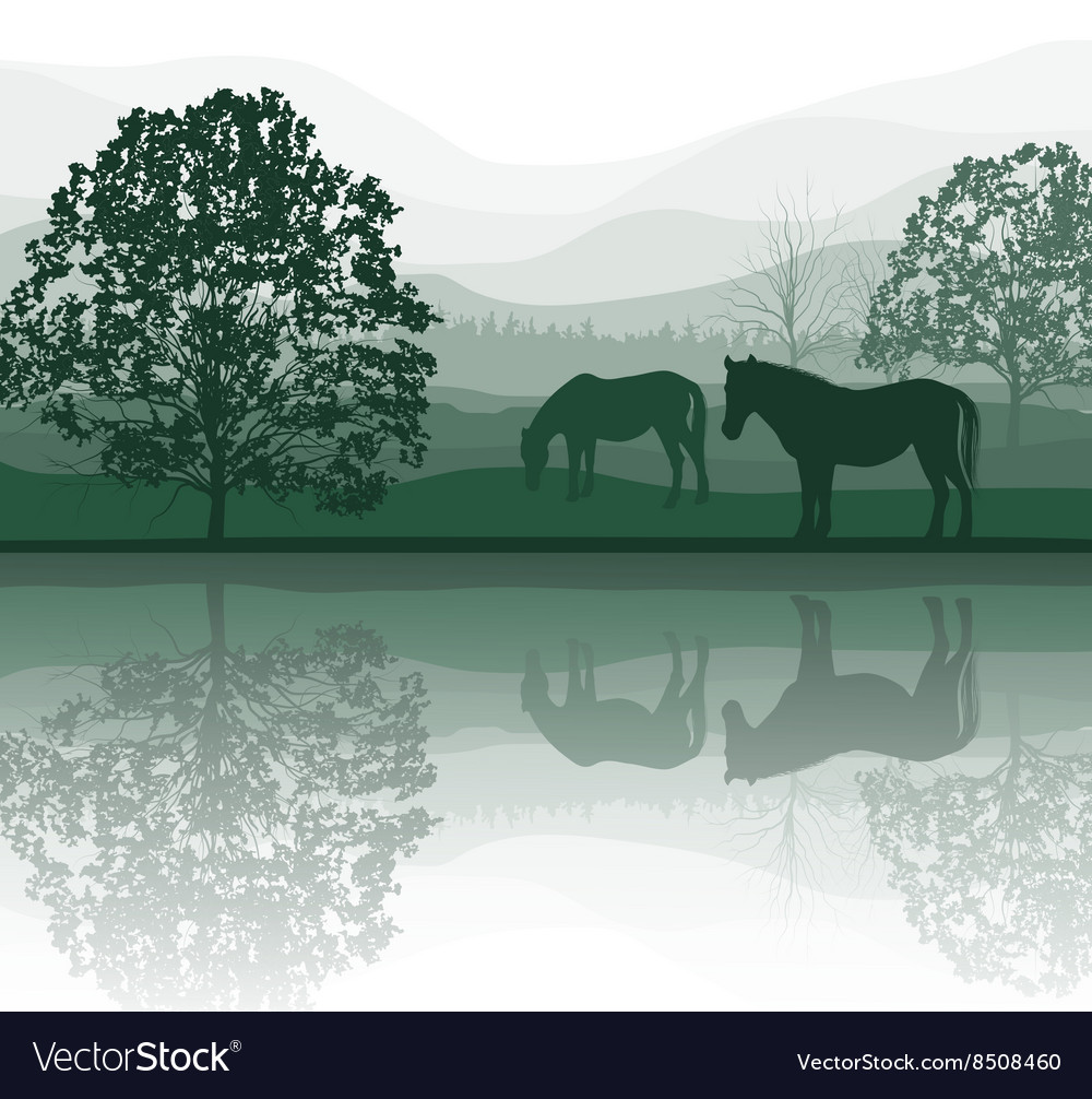 Horses by a meadow and lake vector