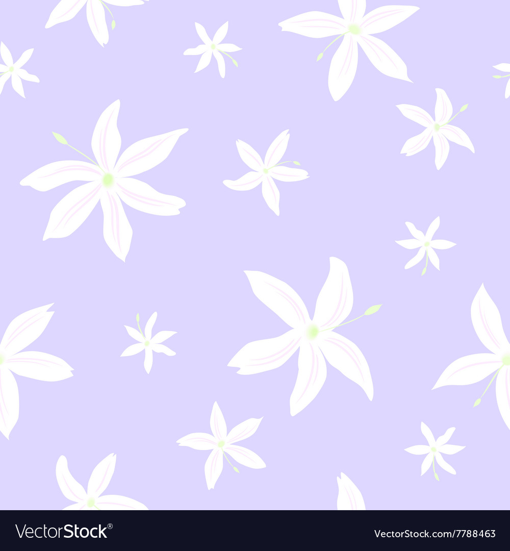Jasmine flowers pattern vector