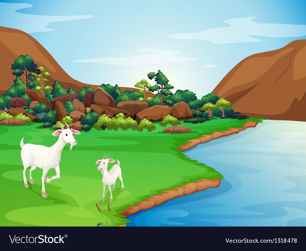 Two goats at the riverbank vector