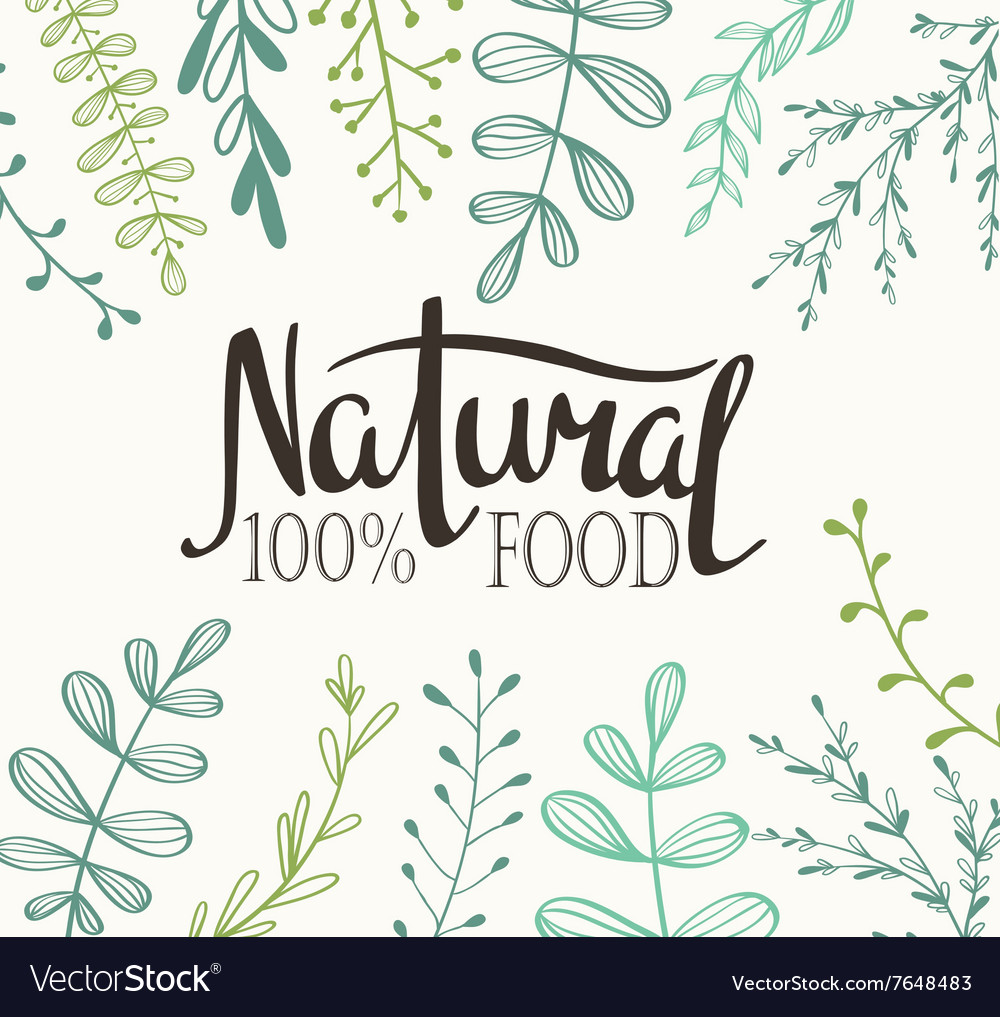 Eco card with plants and lettering natural food vector