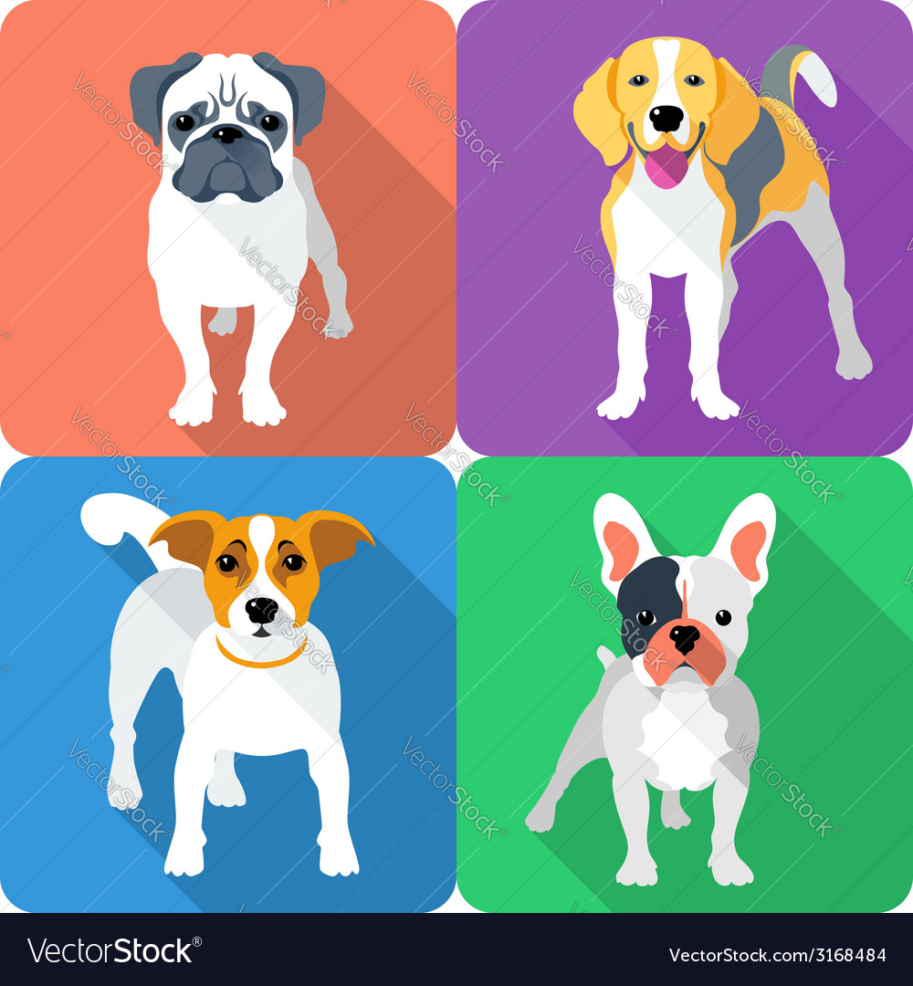 Set dog icon flat design vector