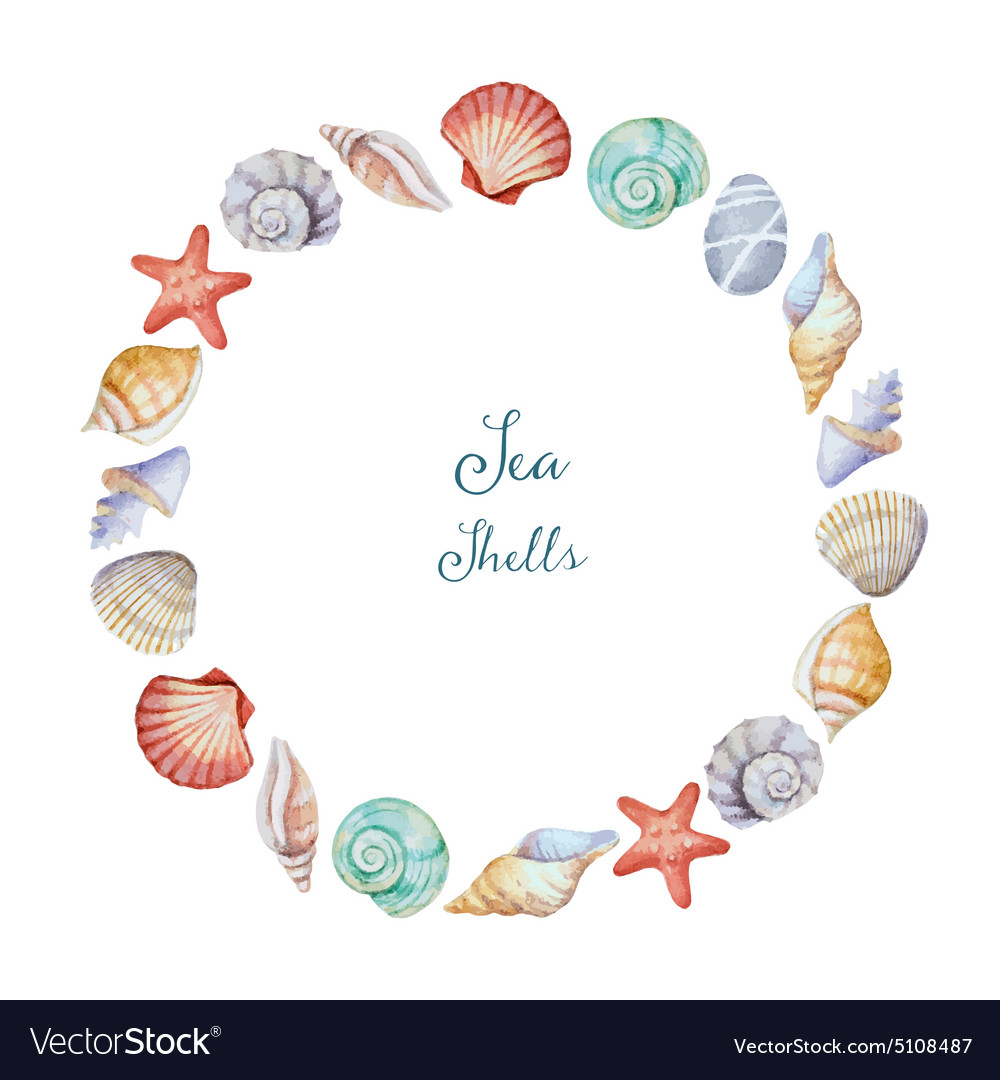 Watercolor round frame of sea shells vector
