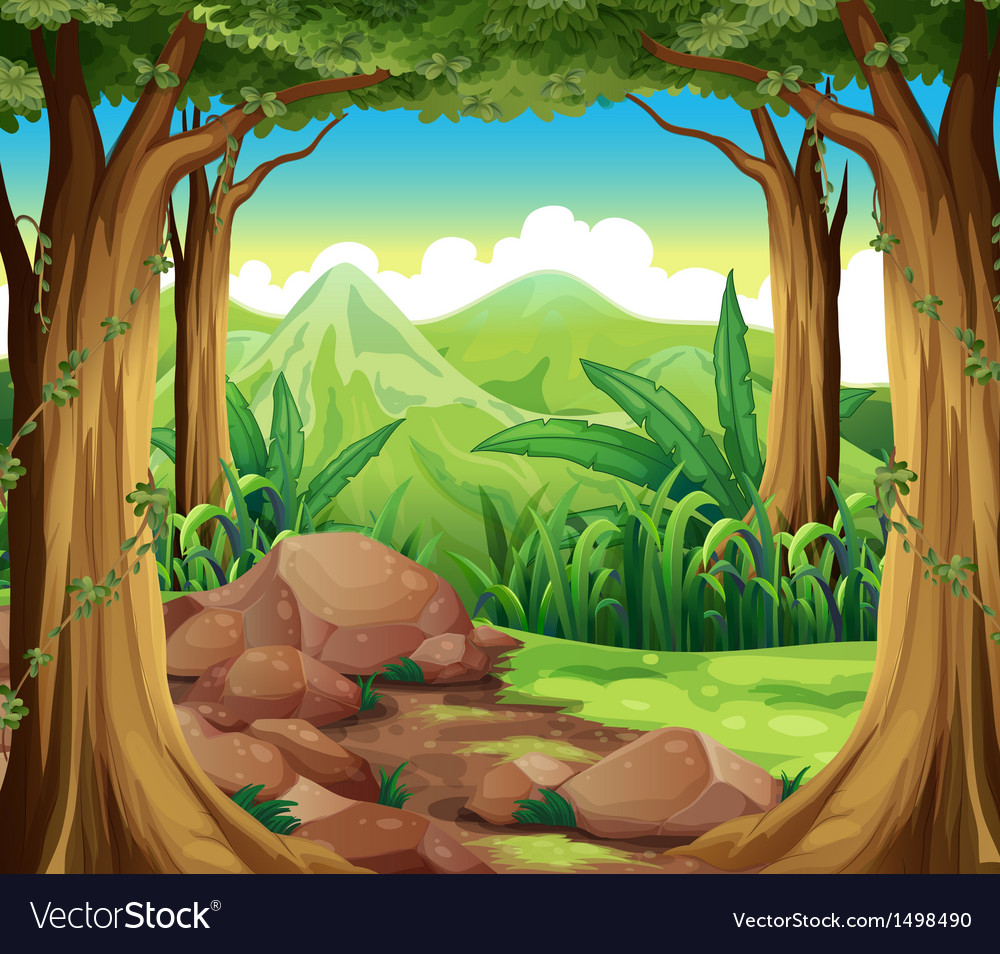 Rocks at the forest vector