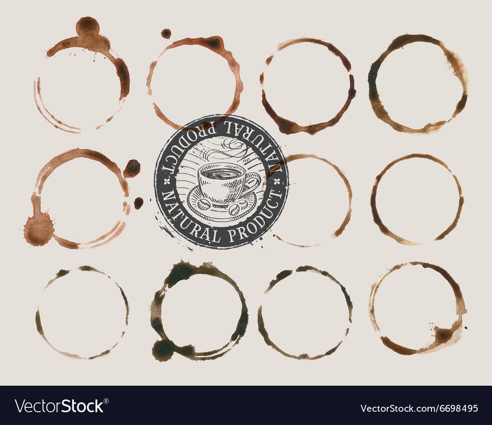 Coffee stains isolated on a light background vector