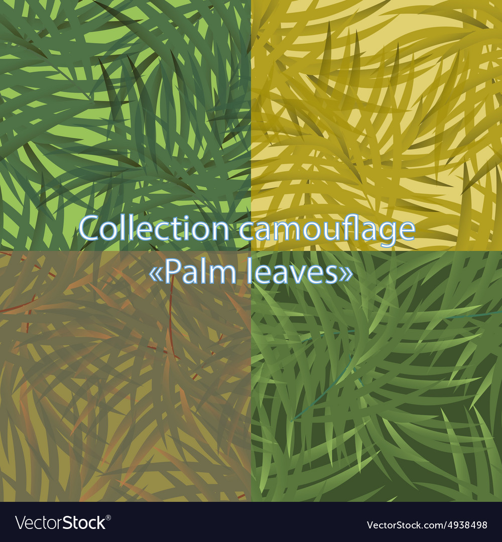 Pattern camouflage with palm leaves vector
