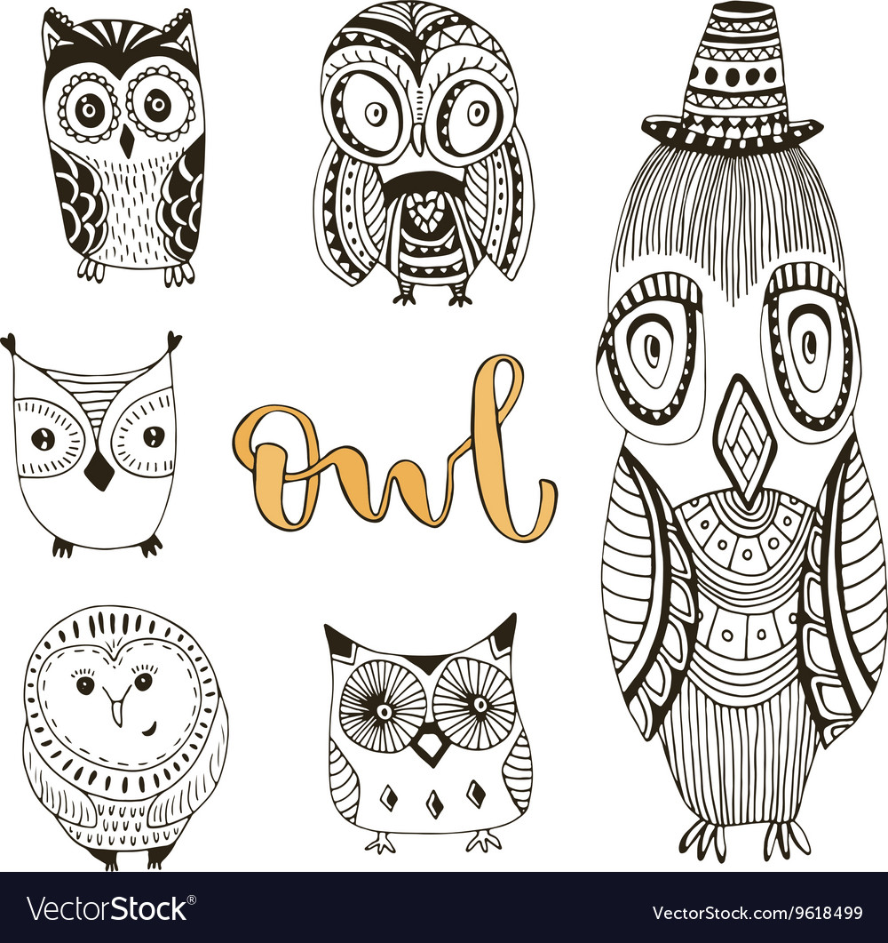 Set of cute doodle owls birds isolated vector