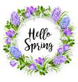 Hello spring vector image