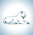 Lion drawing vector image