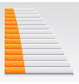Cigarettes vector image vector image