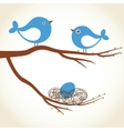 Cute beauty birds on the tree branch vector image