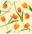 orange tulip on beige ivory background vector image
