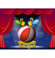 Two colorful parrots at the stage vector image vector image