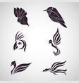 bird logo icon set vector image