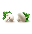 Whole and Half White Champignons with Parsley vector image