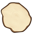 Cut of a tree vector image vector image