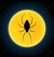 halloween spider hanging web moon background vector image