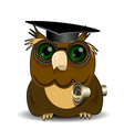 Owl scientist vector image