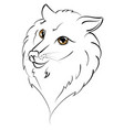 cute wolf portrait vector image