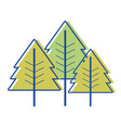 beauty natural pine tree design vector image