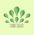 corn salad leaf vegetable cartoon icon with light vector image