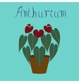 flat on background plant Anthurium vector image