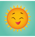 the funny sun vector image