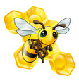 cartoon bee with honeycomb vector image
