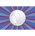 Volleyball Ball Background vector image vector image