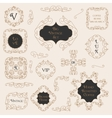 Vintage Decorations Design Elements vector image